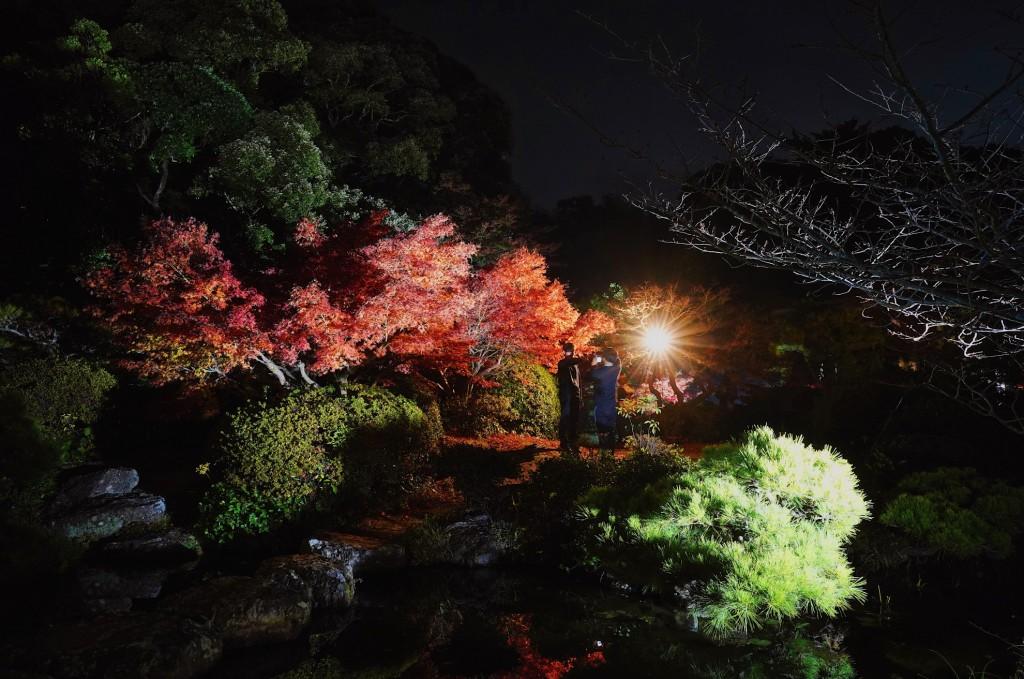 長府庭園ライトアップ
